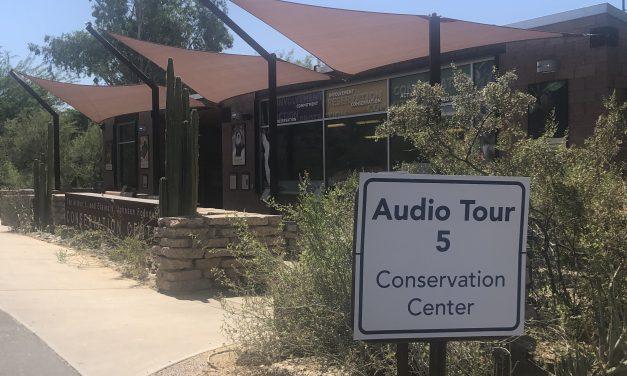 Phoenix Zoo: A drive through Experience